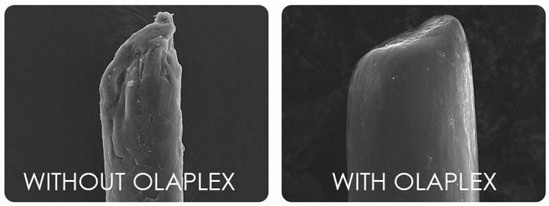 How Olaplex works. Olaplex for dry damaged hair